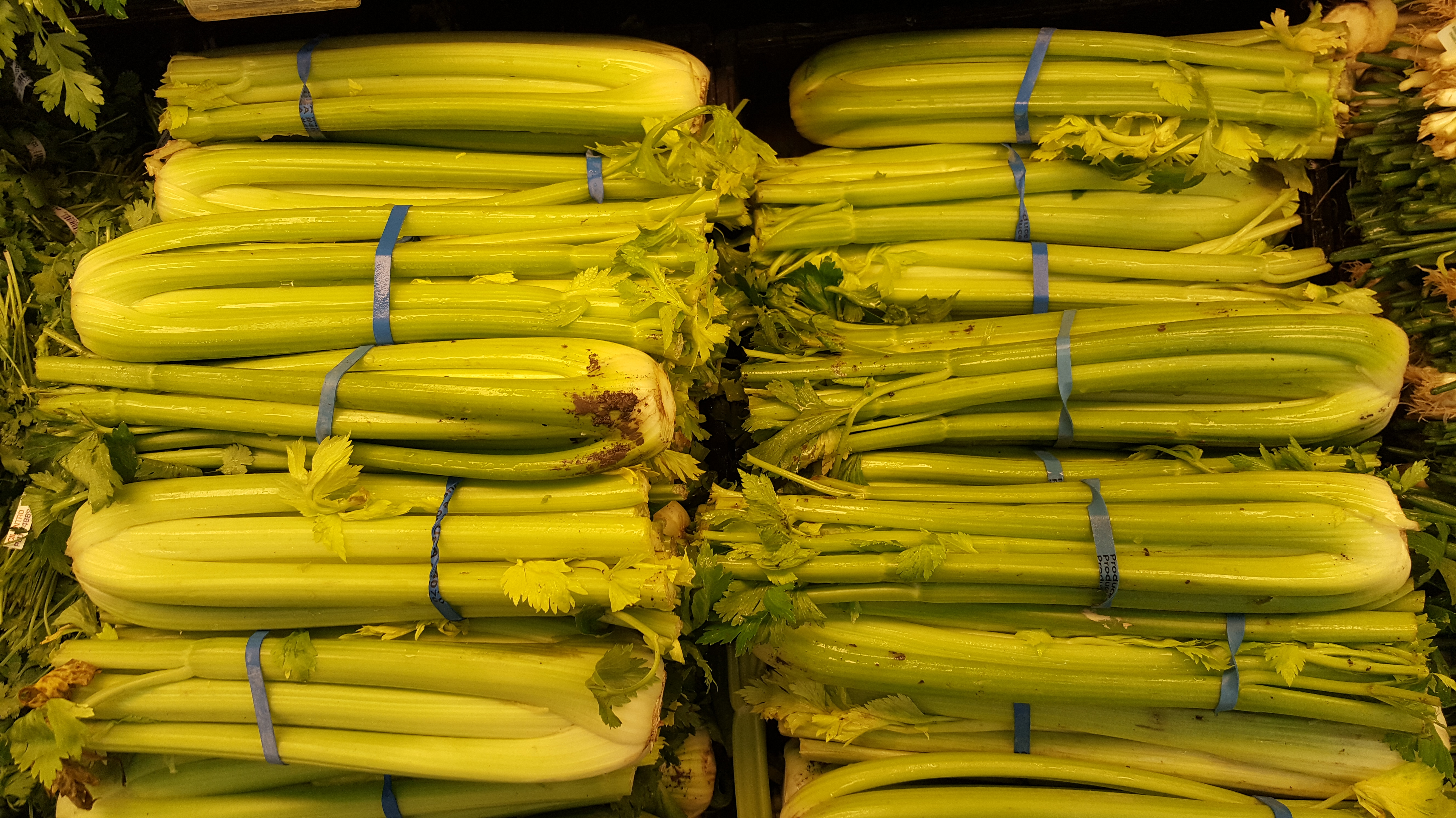Is Celery Good For Inflammation