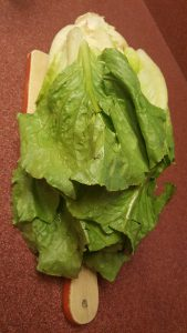 Foods-That-Reduce-Inflammation-Naturally-all-about-romaine-lettuce