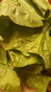 Foods-That-Reduce-Inflammation-Naturally-all-about-romaine-lettuce-close-up
